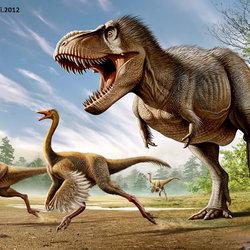 T.Rex VS Struthiomimus