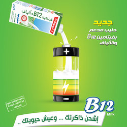 b12 milk