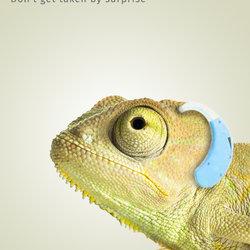 Chameleon Deaf