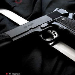 the gun zone