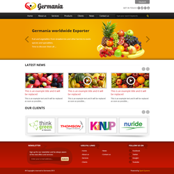 Germania Logo & website