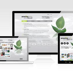 الموقع الإلكتروني لمكتبي (المدهش للتصميم) www.amazing-ads.com