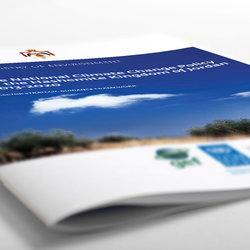 1 - UNDP Report