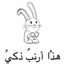 لازم تعرفوا ان فيه ارنب ذكي