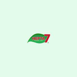 HEPTA 7  Ltd. Branding