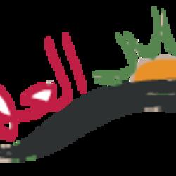 تصميم شعار موقع اخباري