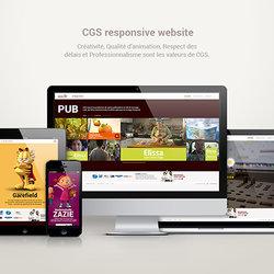 CGS responsive website