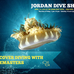 Branding and Illustration for Jordan Dive Show
