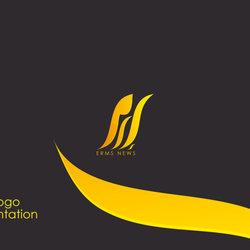 Erm News logo presentation