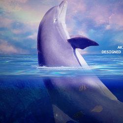 الدلفين الضائع .