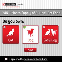 Purina Microsite & App - Responsive Design