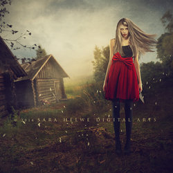 Photo manipulations 2014