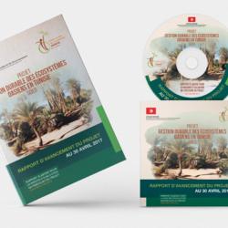 Gestion durable des écosystèmes oasiens en Tunisie