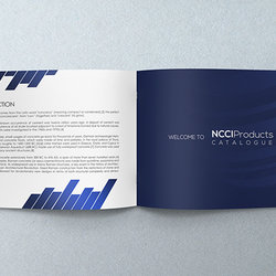 Catalogue concept development for NCCI company