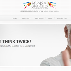 Bonsai Graphics Wesite(Link)