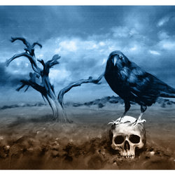The crow and a skull