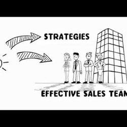The Sales Advisors
