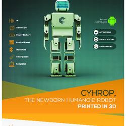 Flyer CYRHOP