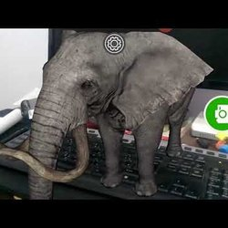 Augmented Reality - Elephant Test