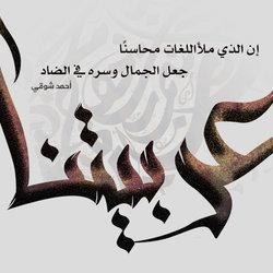 عربيتنا