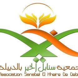 logo Snabel Elkhaier