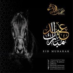 Eid Al-Adha Posts