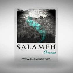 2 - Salameh Water Transition