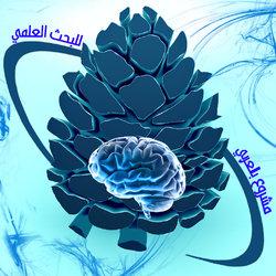 ديزان لمؤسسة بالعربي