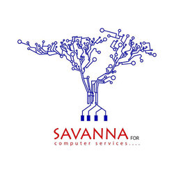 sanava for computer services