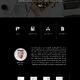 Wix Website - Training & Consulting
