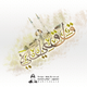 (مدينة قلقيلية ) فن التخطيط للمدن الفلسطينية