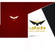 Borg El-Arab Air-port New Identity