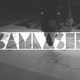 SamLaser Identity