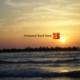 Mohamed Raed Logo