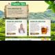 1 - HTML5 Website