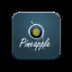 Pineapple App