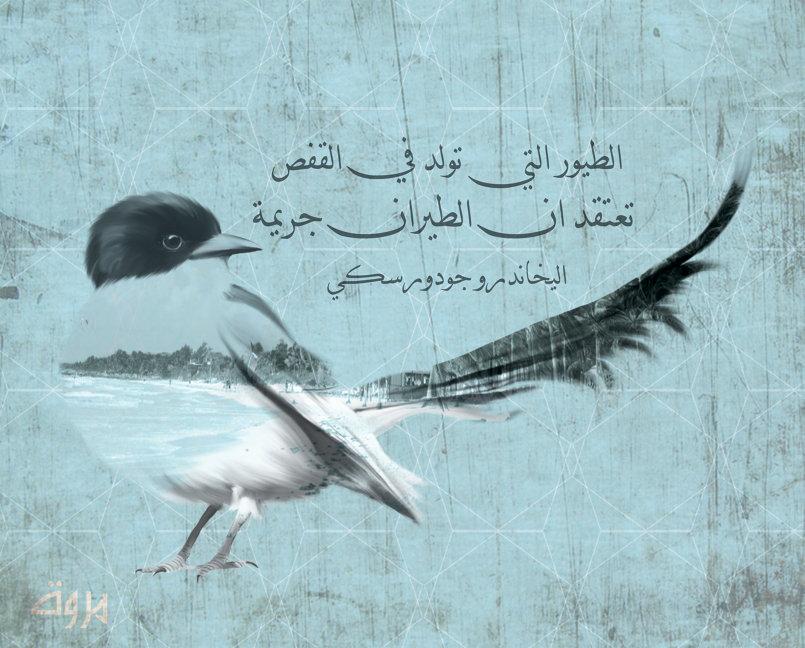 الطيور التي تولد في القفص   تعتقد ان الطيران جريمة