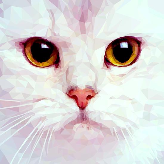illustrator.. polygon