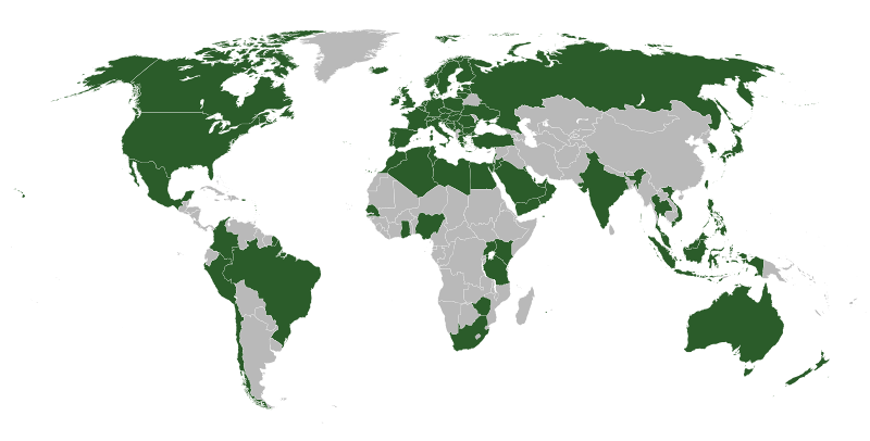 دول تتوفر لها نسخ محلية من الموقع
