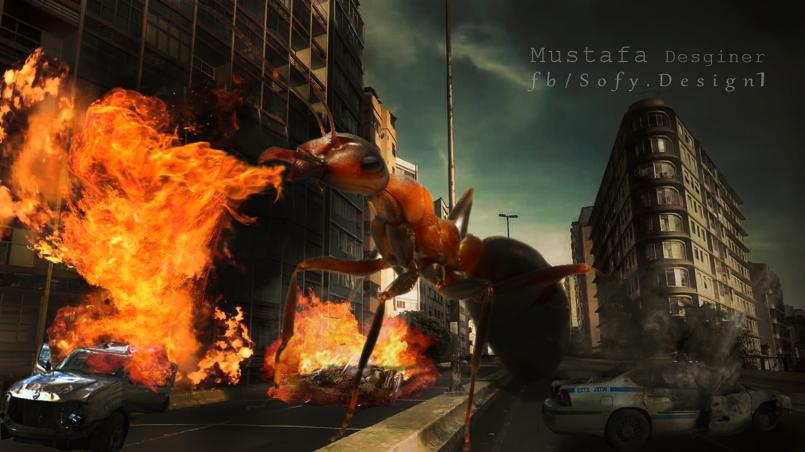 النملة المدمرة - Ant destroyer