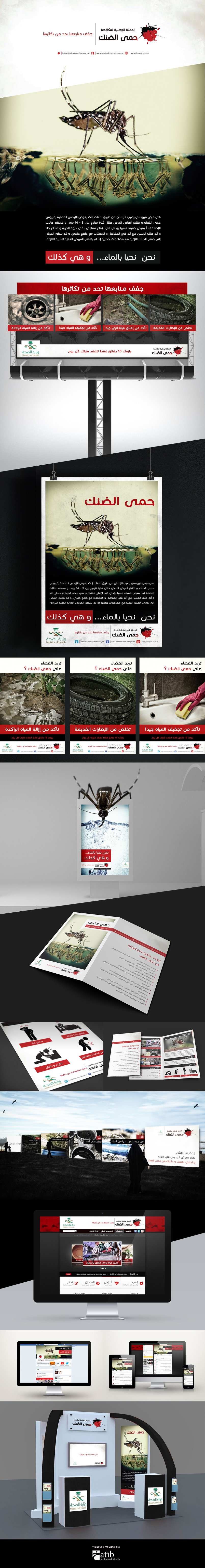 Dengue Fever - The national campaign against dengue fever