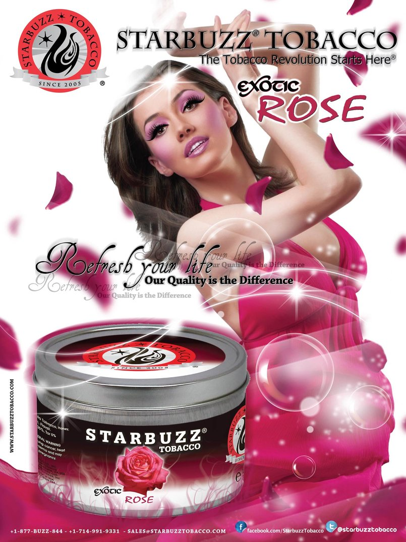 StarBuzz Tobacco Rose