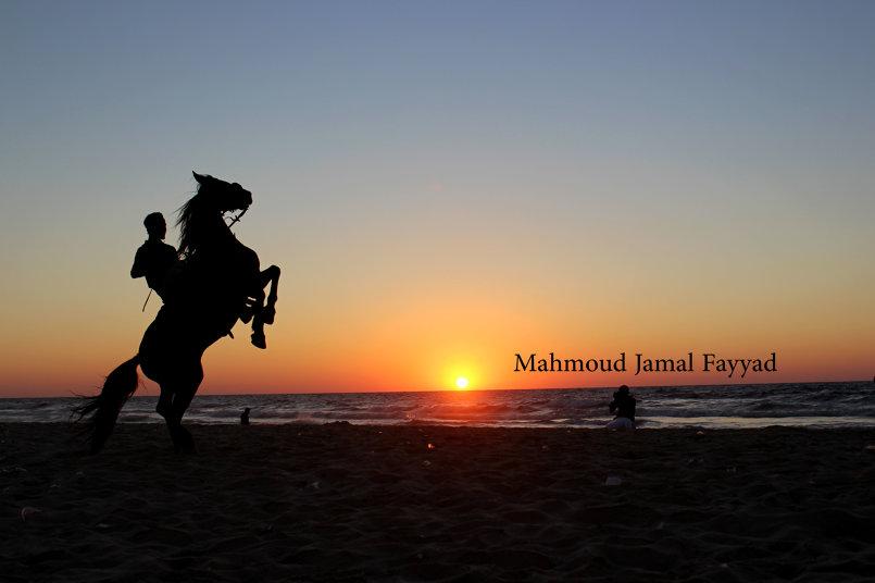 ستوديو محمود للتصوير الفوتوغرافي