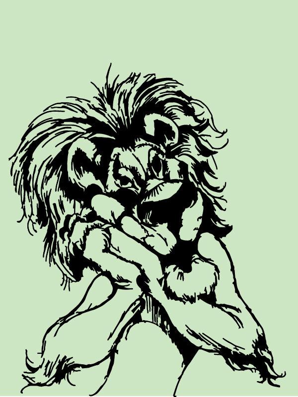 creative lion  caricature