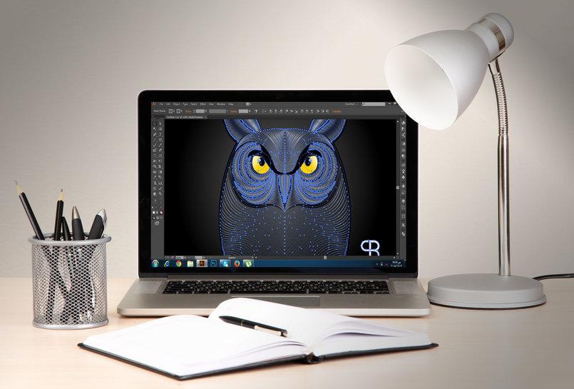 owl illustation