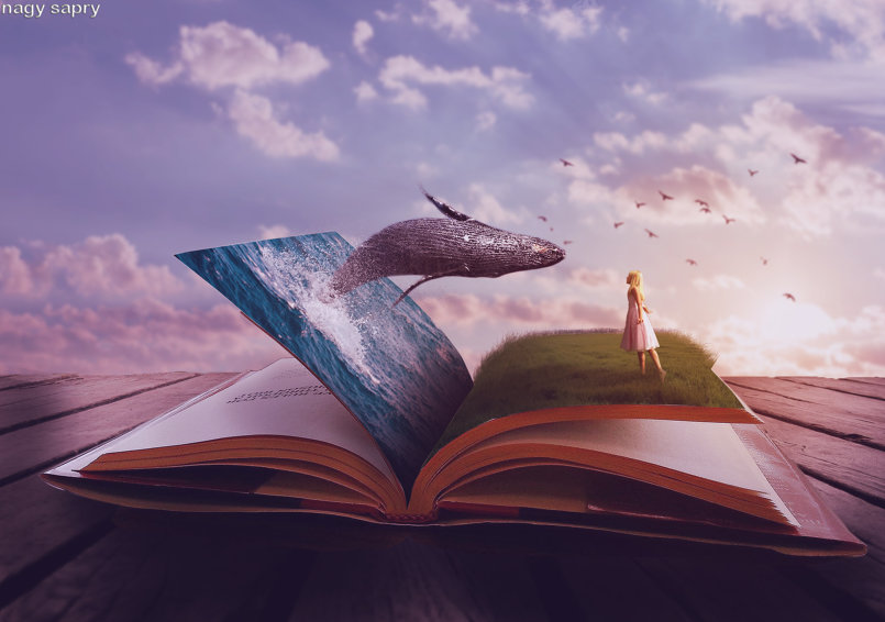 في كتاب الخيال لا توجد قواعد للمنطق