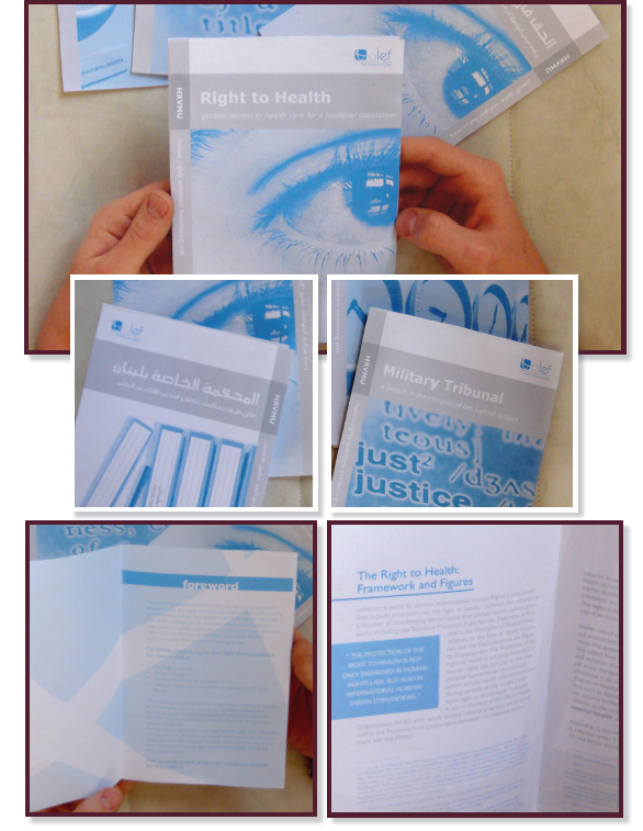 'Human rights violation reports'  Bilingual reports that aim to provide a preliminary contextual analysis