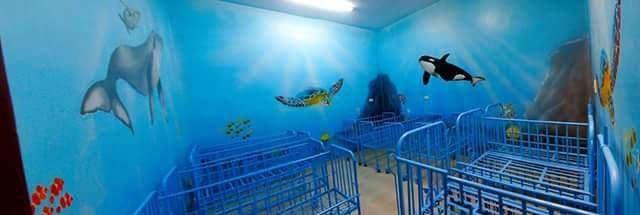 الغرة الزرقاء The blue room