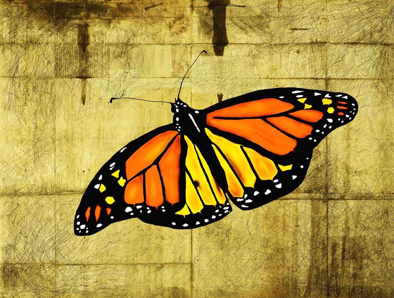 digital art  Butterfly 70 x 60