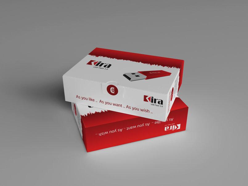 Flash Disk Box